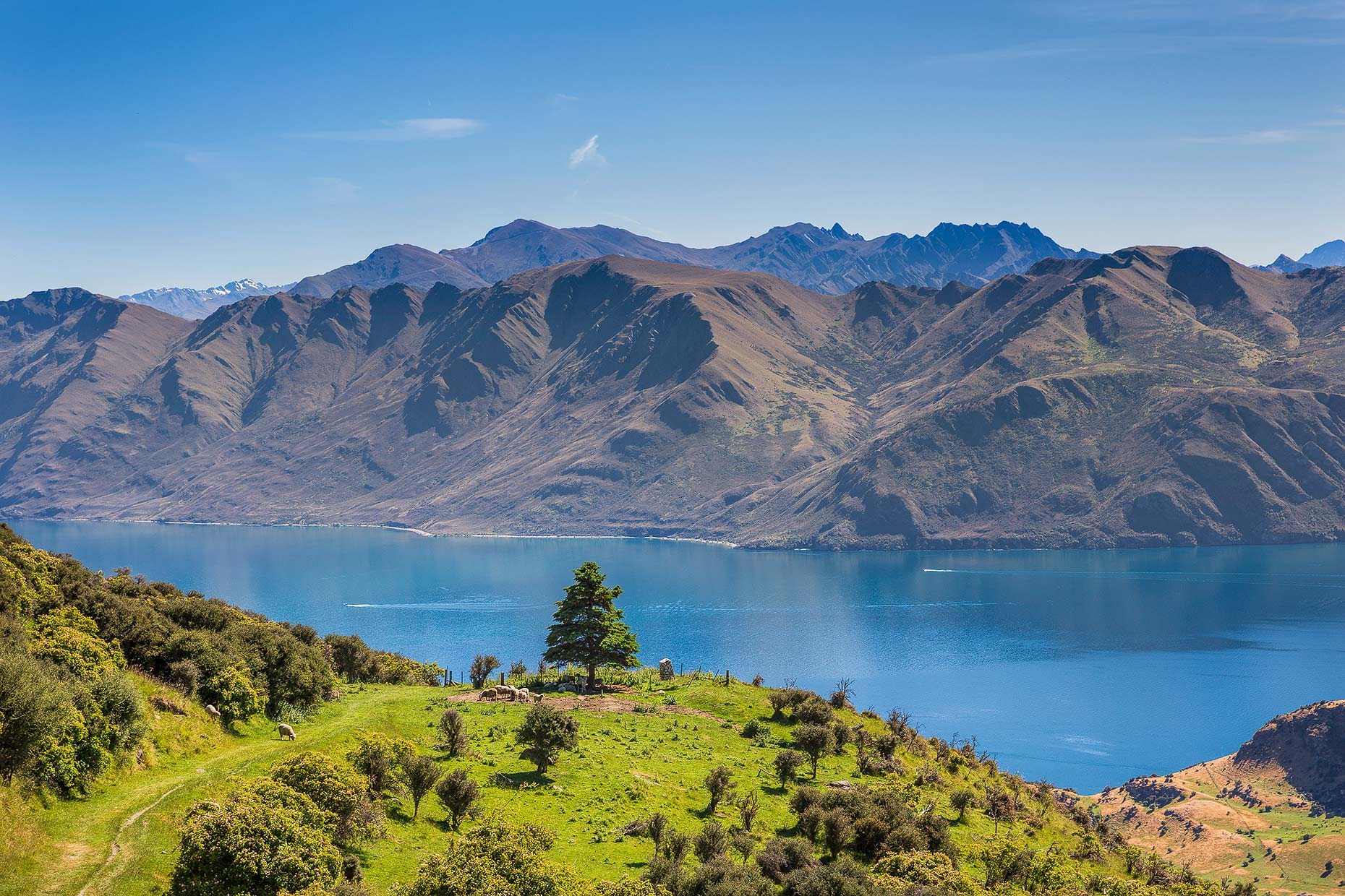 Travel & Lifestyle Photographer | Lake Wanaka New Zealand | Stock Photography | Michael Evans Photographer